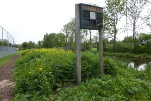 insectenhotel en idylle bloeiend met koolzaad