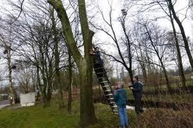 vogelnestkastjes inspectie januari 2015